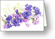 Violet Greeting Cards - Spring flowers Greeting Card by Elena Elisseeva