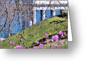 Hill Photographs Greeting Cards - Spring Greeting Card by Janice Drew
