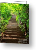 Stair Walk Greeting Cards - Stairway to forest Greeting Card by Noppakun Wiropart
