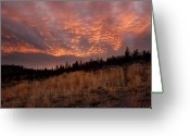Kamloops Greeting Cards - Steelhead Provincial park sunset Greeting Card by Pierre Leclerc