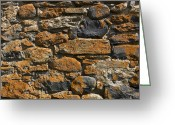 Lichen Image Greeting Cards - Stone wall Greeting Card by Bernard Jaubert