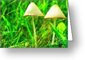 Dew Drop Greeting Cards - Stump Fairy Helmet Greeting Card by Thomas R Fletcher