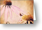 Flower Picture Greeting Cards - Summer Feeling Greeting Card by Angela Doelling AD DESIGN Photo and PhotoArt