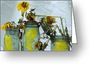 Mason Jars Photo Greeting Cards - Sunflowers .Helianthus annuus Greeting Card by Bernard Jaubert