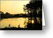 Landscape Framed Prints Greeting Cards - Sunrise Over Assateague Greeting Card by Steven Ainsworth