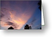 Sunset Scenes. Digital Art Greeting Cards - Sunset At Pine Tree Greeting Card by Rob Hans