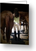 Dressage Photo Greeting Cards - Tails Greeting Card by Steven  Digman