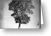 Alone Greeting Cards - Textured tree Greeting Card by Bernard Jaubert