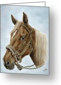Wild Horse Greeting Cards - The Boss Mount Greeting Card by Cathy Cleveland