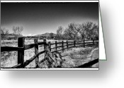 Flood Plain Greeting Cards - The Fence Line at South Platte Park Greeting Card by David Patterson