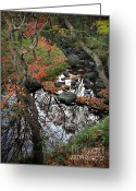 Red Leaves Greeting Cards - The Heart of The Forest Greeting Card by Eena Bo