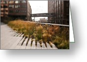 Skyway Greeting Cards - The High Line Park Greeting Card by Eddy Joaquim