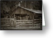 Old Wooden Fence Greeting Cards - The last barn Greeting Card by Joan Carroll