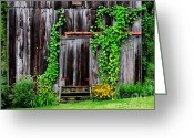 Old Doors Greeting Cards - The Old Shed Greeting Card by Perry Webster