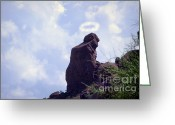 The Lightning Man Greeting Cards - The Praying Monk with Halo - Camelback Mountain Greeting Card by James Bo Insogna
