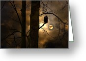 Somber Greeting Cards - The Raven Greeting Card by Ron Jones