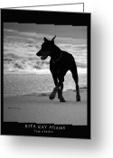 Doberman Greeting Cards - The Stroll Greeting Card by Rita Kay Adams