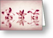 Dreamy Flower Greeting Cards - Three Greeting Card by Kristin Kreet