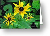 Black Eyed Susans Greeting Cards - Three Susans Greeting Card by Sarah Loft