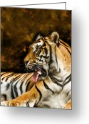 Paws Digital Art Greeting Cards - Tiger Greeting Card by Svetlana Sewell