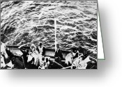 Survivor Greeting Cards - Titanic: Lifeboats, 1912 Greeting Card by Granger