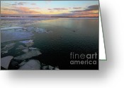 Canadian Landscape Greeting Cards - Toronto Inner Harbour Winter Greeting Card by Charline Xia
