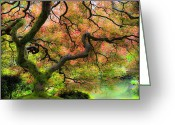 Reds Of Autumn Photo Greeting Cards - Tree of Beauty Greeting Card by Steve McKinzie