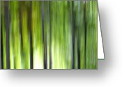 Decorativ Photo Greeting Cards - Trees Greeting Card by Silke Magino