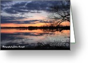 True Colors Greeting Cards - True colors Greeting Card by Joshua Fronczak