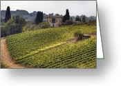 Vineyard Greeting Cards - Tuscany Greeting Card by Joana Kruse