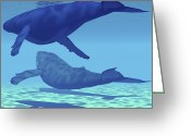 Sea Life Digital Art Greeting Cards - Two Humpback Whales Swim Together Greeting Card by Corey Ford