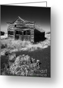 Black And White Barn Greeting Cards - Under the Weight of It All Greeting Card by Mike  Dawson