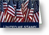 United We Stand Greeting Cards - United we stand Greeting Card by Nancy Greenland