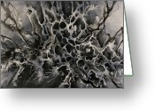 Monotone Painting Greeting Cards - Untitled 1 Greeting Card by Michael Lang