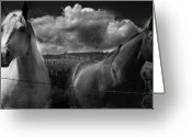 Canadian Photographer Greeting Cards - Us Greeting Card by Jerry Cordeiro