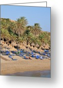 Suntan Greeting Cards - Vai beach Greeting Card by George Atsametakis