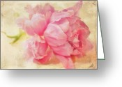 Pink Peonies Greeting Cards - Vintage Pink Greeting Card by Cathie Tyler