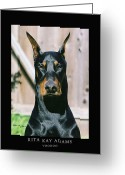 Dobe Greeting Cards - Voodoo Greeting Card by Rita Kay Adams