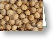 Shuck Greeting Cards - Walnuts Greeting Card by Michal Boubin