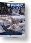 Forested Greeting Cards - Wasatch Mountains in Winter Greeting Card by Utah Images
