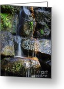 Background Greeting Cards - Waterfall Greeting Card by Carlos Caetano