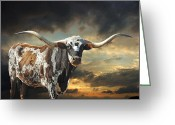 Texas Hill Country Greeting Cards - West of El Segundo Greeting Card by Robert Anschutz