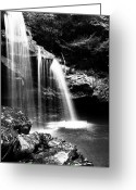 Trout Stream Greeting Cards - West Virginia Waterfall  Greeting Card by Thomas R Fletcher