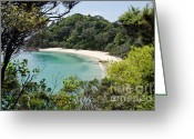 Whale Beach Greeting Cards - Whale bay in New Zealand Greeting Card by Yurix Sardinelly