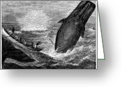 Leap Greeting Cards - WHALING, 19th CENTURY Greeting Card by Granger