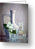 Irina Greeting Cards - White on White Greeting Card by Irina Sztukowski