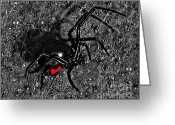 Hourglass Design Greeting Cards - Wicked Widow - Selective Color Greeting Card by Al Powell Photography USA