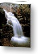 Yosemite Creek Greeting Cards - Wildcat Falls Greeting Card by Bill Gallagher