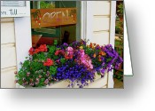 Pretty Flowers Greeting Cards - Window View Greeting Card by Lisa Billingsley