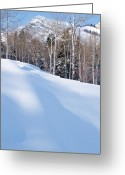 Mountainous Greeting Cards - Winter in the Wasatch Mountains of Northern Utah Greeting Card by Utah Images